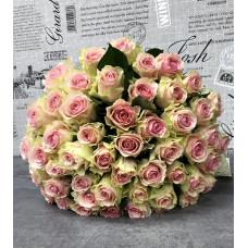 Роза «Кения»