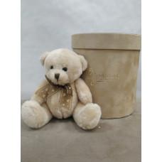 Маленький милый медвежонок Фото 1