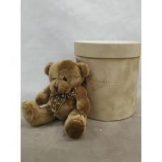 Маленький милый медвежонок Фото 2