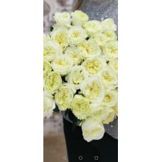 Элитные пионовидные розы с невероятным запахом Фото 2