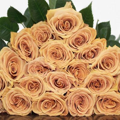 Пионовидная роза Toffee 70см Фото 1